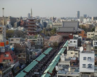 Le Senso-ji est au fond, devant, caché par les cerisiers, on aperçoit un petit bout de la porte Hozomon et devant, Nakamise-dori.