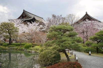 Toji Temple 04